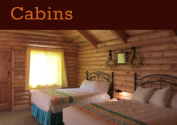 Bryce Canyon Log Cabins